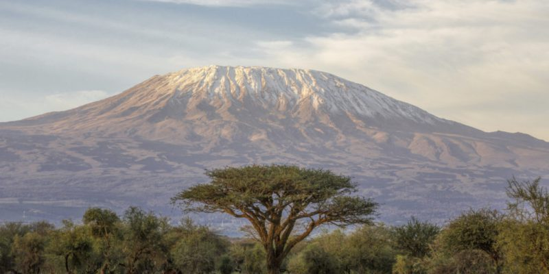 Outdoor Afro Takes Environmental Leadership to New Heights On Mount Kilimanjaro
