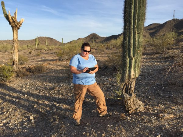 Female botanist using ipad to document locations of cacti on Arizona transmission line project.