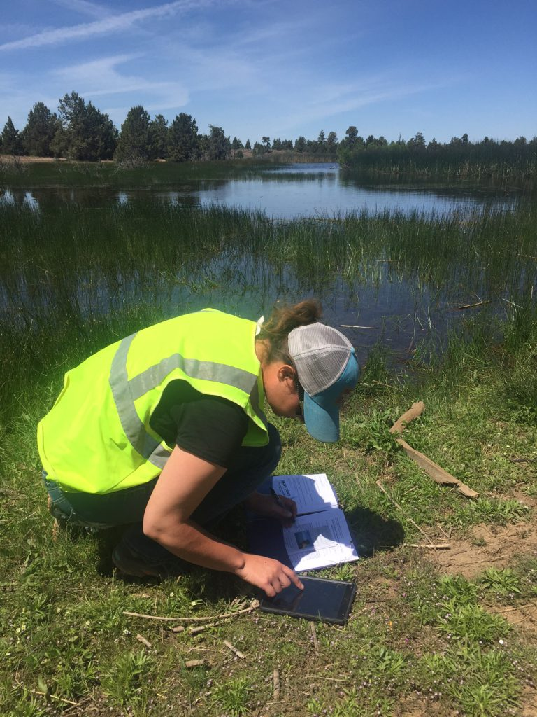 Female biologist in front of lake performing wetland dilineation using iPad and survey forms.