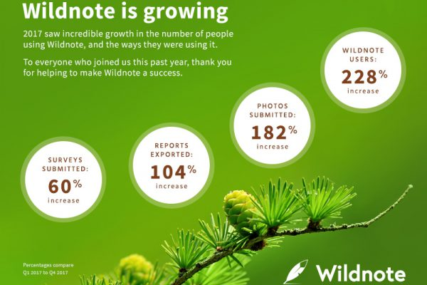 shows Wildnote Inc's 2017 Q1 to Q4 growth
