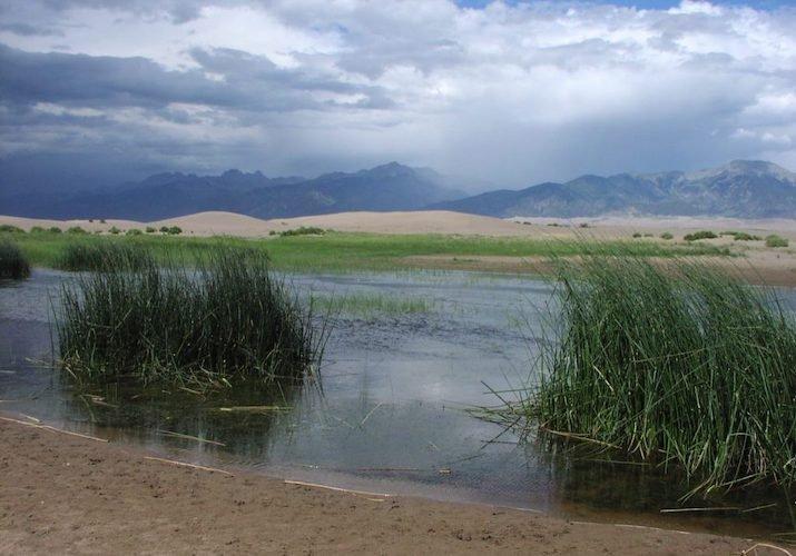 wetland-colorado-landscape